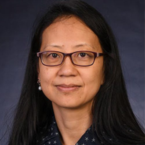 Dr. Sheng Lin-Gibson
